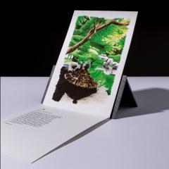 """carte sérigraphiée """"jardin Isuien, Nara"""" - 7€"""
