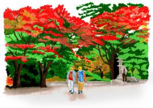 15redtrees-kyoto
