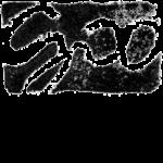 logo-goo3